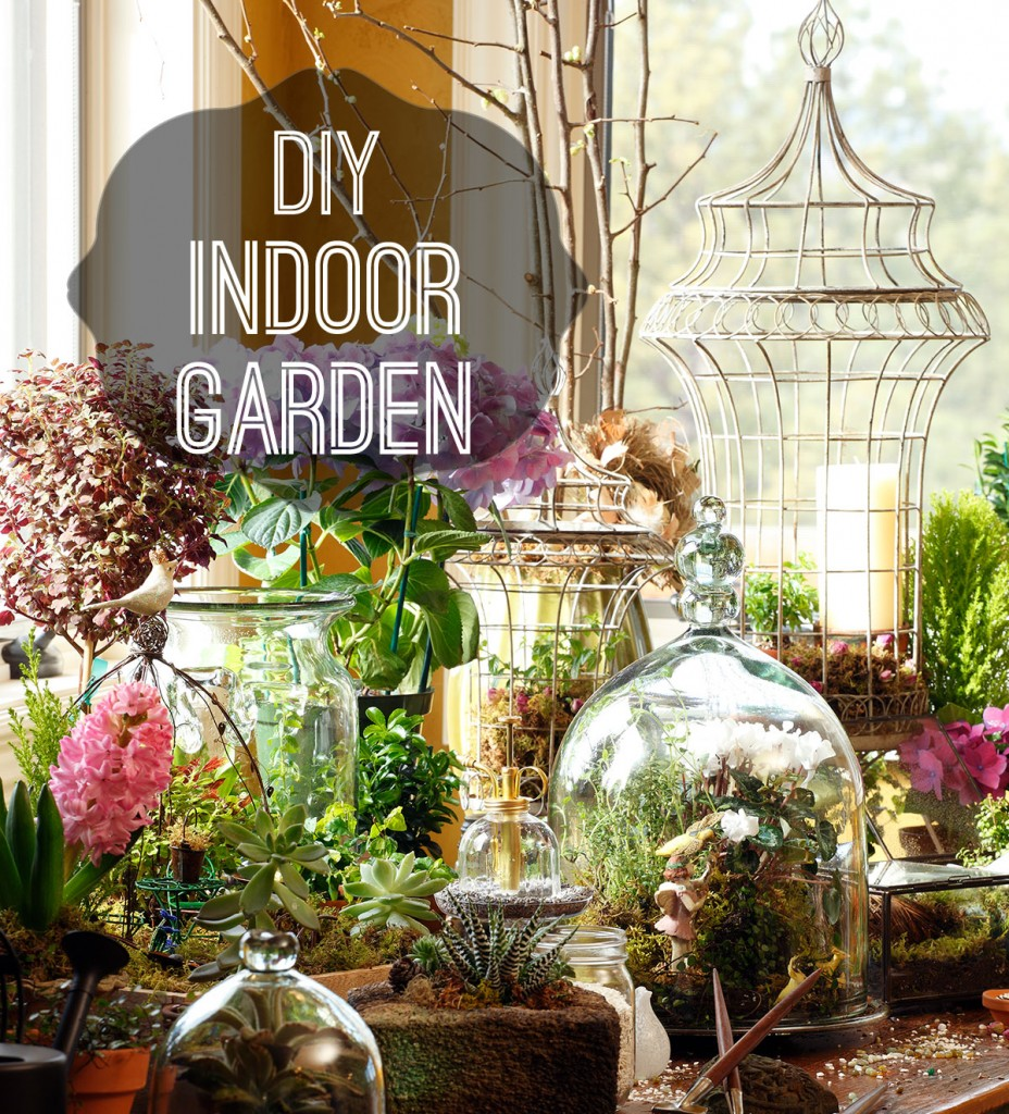 How to diy and indoor garden for Indoor gardening videos